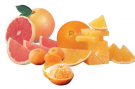 Citrus_group